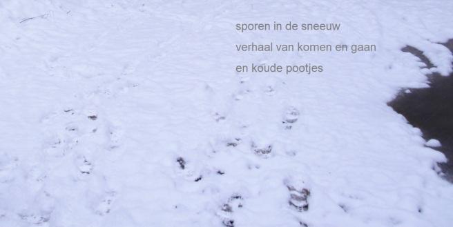 sporen in de sneeuw / verhaal van komen en gaan / en koude pootjes