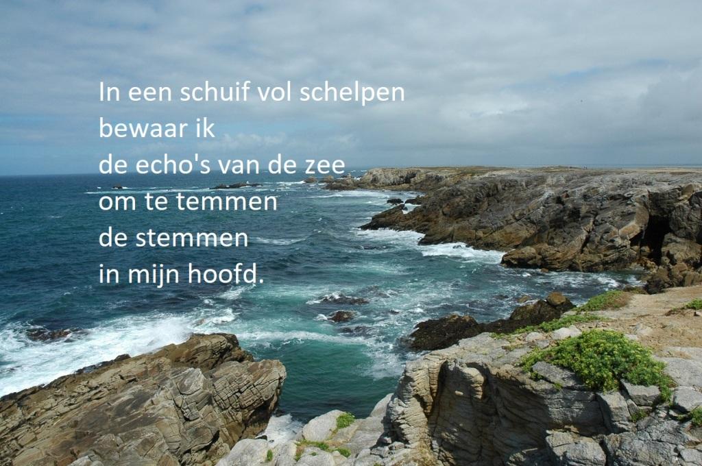 In een schuif vol schelpen bewaar ik de echo's van de zee om te temmen de stemmen in mijn hoofd.