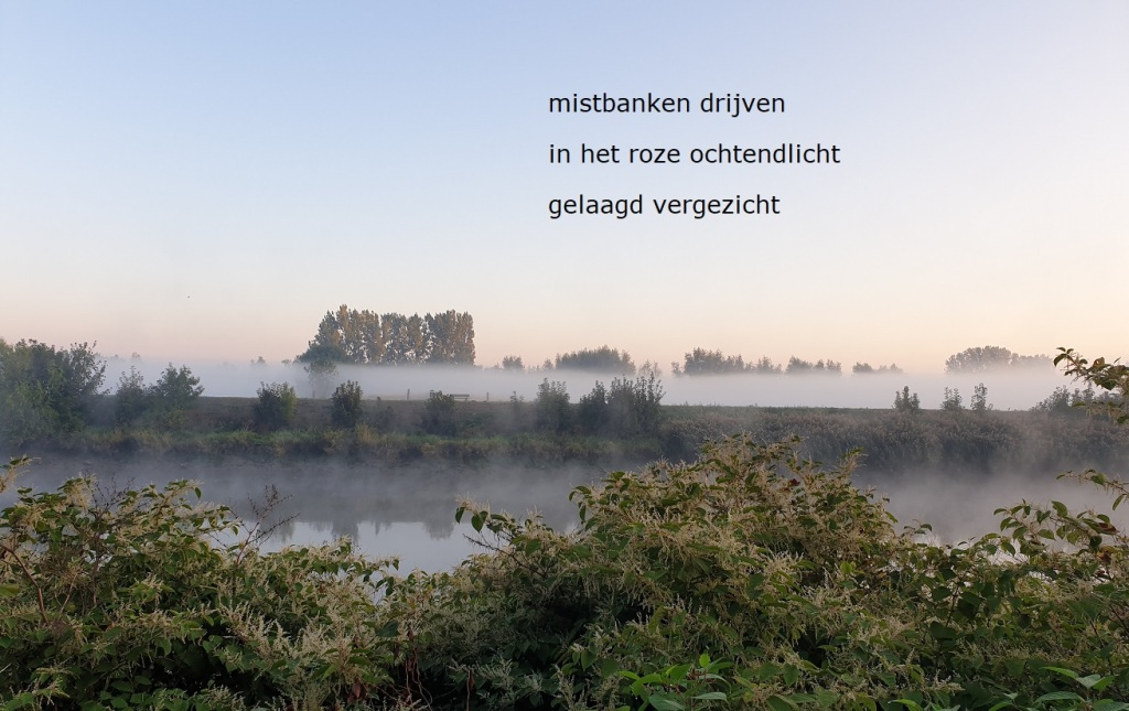 mistbanken drijven / in het roze ochtendlicht / gelaagd vergezicht