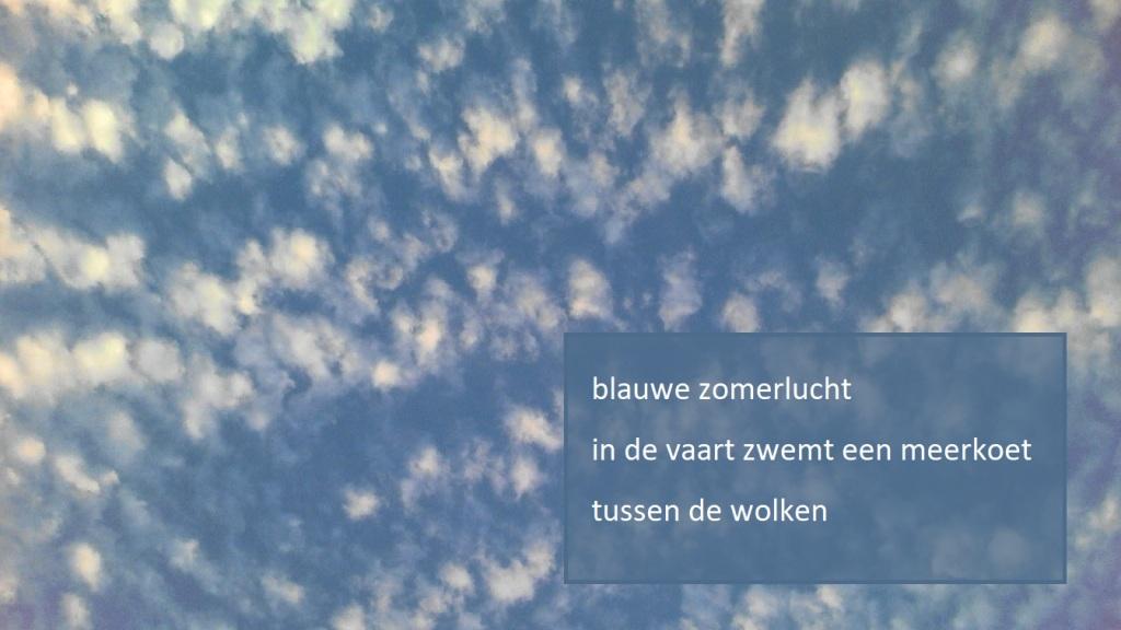 blauwe zomerlucht in de vaart zwemt een meerkoet tussen de wolken